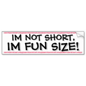 im_not_short_im_fun_size_bumper_sticker-ra3766e82e59b4acdaf913c55b4b0b5bd_v9wht_8byvr_324