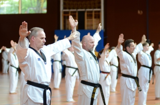Poomsae_Training (Medium)