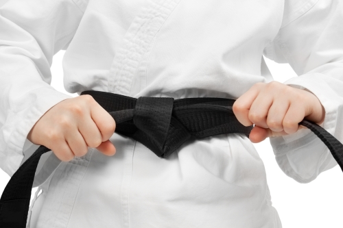 black belt cinch.jpg